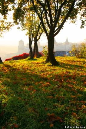 Настрій на гарний день. Фото А.В. Мудрецова